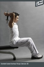Dumbbell Seated Overhead Triceps Extension (B)